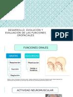DESARROLLO EVOLUCIÓN Y EVALUACIÓN DE LAS FUNCIONES (exp).pptx