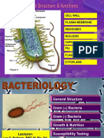 190616321-Bacteria