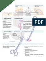 Appendicitis.doc