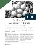 El Cultivo de Tomate