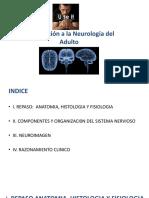 1 Clase Introducción a La Neurología Del Adulto2016marzo (2)