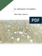 Raul Sanz Flores Campos Minados