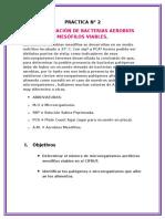 PRACTICA N° 2 DETERMINACION DE MESOFILOS AEROBICOS
