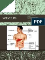 Referat Volvulus