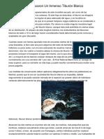 Por Accidente, Pescaron Un Inmenso Tiburón Blanco