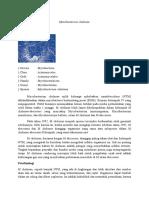 Mycobacterium chelonae dan avium.docx