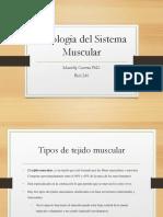 Contraccion Sistema Muscular (1).pdf