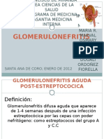 Glomerulonefritis ABELIN