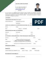 curriculum vitae Vega Maza.docx