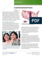 Environmental Factors and Breast Cancer Risk 508