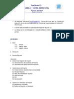 pauta informe 1 control de proyectos