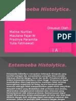 slide Entamoeba Histolytica