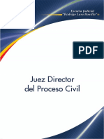 Juez Director Del Proceso Civil