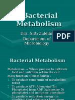 Bacterial Metabolism (Eng.)