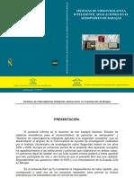 05 Introduccion Libro Cabello Pardos