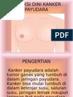 Deteksi Kanker Payudara 3