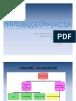 HIDRO-BIODEGRADACIÓN