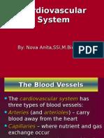 Cardio Physiology