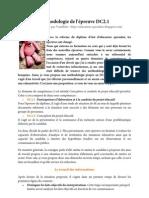 Méthodologie_de_l'épreuve_DC2.1_Vanillette