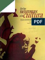 [Rosa Icela Ojeda] de Las Neuronas a La Cultura