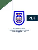 Informe de Gestion PIE Escuela GRAL CRUZ 2015