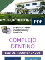 Anatomia Dental Pulpa