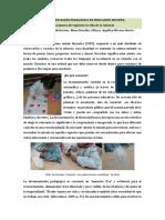 A Documentación Pedagógica en Educación Infantil Una Manera de Registrar La Vida de La Infancia