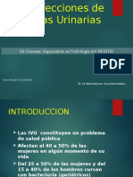 Infecciones-de-Vias-Urinarias kairo.ppt