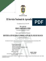 Curso Identificacion de Ideas y Formulacion de Planes de Negocio