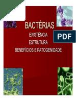 Aula Bacterias Pdf752010104951
