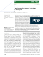 Plant-made Oral Vaccines