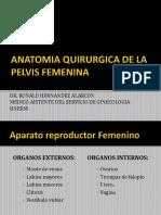 Anatomia Quirurgica de La Pelvis Femenina