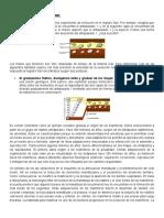 Gradualismo y Saltacionismo (1)