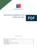 Matriz de Cuidados de Salud a Lo Largo Del Curso de Vida (Cuadernillo 2)