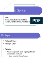 Prolaps Alat Genital
