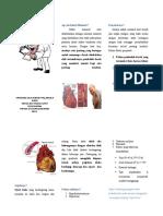 231256787 Leaflet Infark Miokard