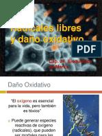 11. Radicales Libres.pdf
