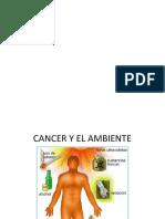 pdf amb gen
