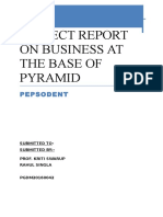 project Report on Business at the Base of Pyramid