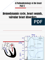 Hemodynamic Cycle
