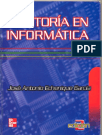 Auditoria Informatica - Echenique