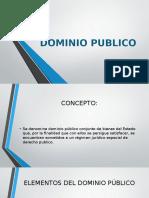 DOMINIO PUBLICO.pptx