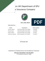Final Report of EFU.