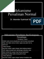 Mekanisme Persalinan Normal Ppt