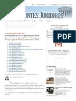 APUNTES JURIDICOS™_ Principios Del Proceso Civil