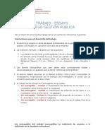 Estructura Del Ensayo - Gestión Pública