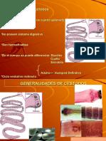 Cestodos Taeniasis y Cisticercosis