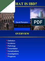What is IBD 2008
