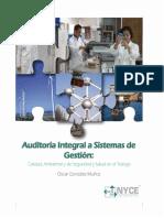 294863134 Auditoria Integral a Sistemas de Gestion