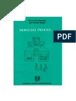 Derecho Procesal Civil - Hector Fix Zamudio y Jose o. Favela
